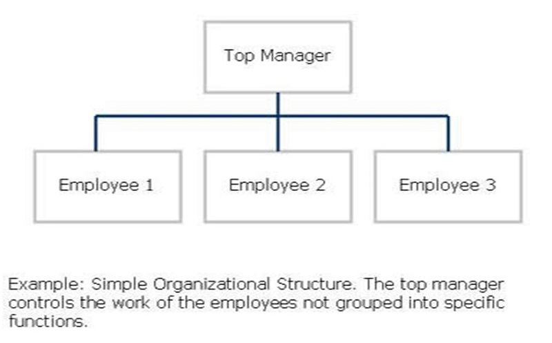 elements and importance of organisational structure Strategies fail over and over again for the same reason: businesses ignore the 5 key structural elements of strategy miss one and your strategy is doomed to fail.